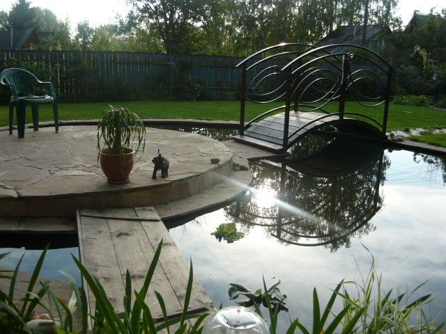 Декоративный водоем на дачном участке